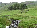 From bridle path E to Sleddale Fell - geograph.org.uk - 945351.jpg