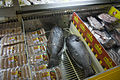 Frozen fish at Sigatoka supermarket.jpg