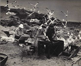 Sears Gallagher - Photograph by Warner Taylor of Sears Gallagher (left) painting Frank Pierce on Fish Beach, Monhegan Island, Maine. Photograph courtesy of Anne Burr Czepiel.
