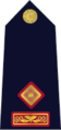 Garda Síochána-07-Superintendent.png