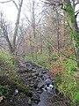 Garpel Burn - geograph.org.uk - 82606.jpg