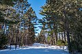 General Andrews State Forest - Willow River Campground - Closed in Winter (40611193122).jpg