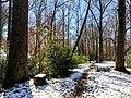 Georgia snow IMG 5610 (38253055214).jpg