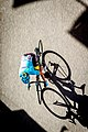 Giro d'Italia, stage 18, Ortisei (36617158250).jpg