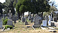 Glasnevin Cemetery (4512988344).jpg