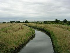 Glaze Brook - geograph.org.uk - 52092.jpg
