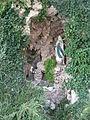 Gornhofen Lourdesgrotte.jpg
