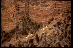 Grand Canyon National Park GRCA1739.jpg