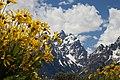 Grand Tetons National Park (5926034599).jpg
