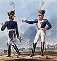 Grande Armée - Line Infantry - Chef de Bataillon & Colonel.jpg