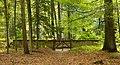 Gravenhorst Alter Evangelischer Friedhof 06.JPG