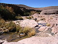 ����� ������� 120px-Guelta3.jpg