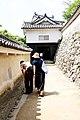 HImeji castle (3811455768).jpg
