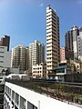 HK Mid-levels Bonham Road 聖保羅書院 Saint Paul's College 開放日 Exhibition Day roof top garden Nov-2011.jpg