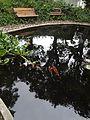 Hacienda Chorlavi pic. a1.jpg