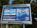 HaeundaeTsunami.png