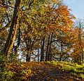 Herfst in Historisch park Heremastate 05.jpg