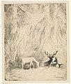 Herten in een Boheems woud, RP-P-OB-19.871.jpg