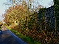 Hinton Daubney, Hampshire - Broadway Lane by the wall - geograph-4284150.jpg