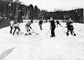 Hockey game in High Park.jpg