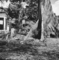 Hollandse begraafplaats, overzicht - 20651761 - RCE.jpg