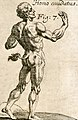 Homo caudatus-1696.jpg