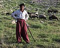 IMG 4302 Lar Plain, Iran. An Afghan shepherd. (33977395842).jpg