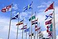 ITC flags 2013.jpg