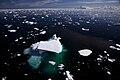 Iceberg from overhead IMG 0320.jpg