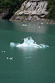 Icefloat Sawyer Glacier 6 (221457484).jpg