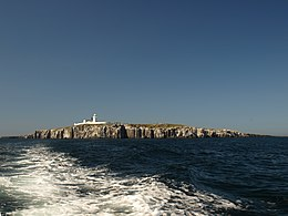 Inner Farne Wide View.jpg