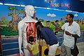 Inside Our Body - Children's Gallery - Birla Industrial & Technological Museum - Kolkata 2013-04-19 7944.JPG