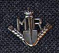 Insigna MTR.jpg