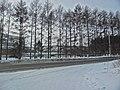 Irkutsk. Akademgorodok. February 2013 - panoramio (125).jpg