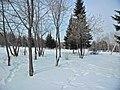 Irkutsk. Akademgorodok. February 2013 - panoramio (16).jpg