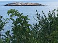 Island off the coast of Magnolia, Gloucester, MA.jpg