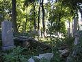 Israelitischer Friedhof Währing September 2006 019.jpg