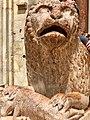 Italie, Modène, Duomo ou Cattedrale di Santa Maria Assunta in Cielo e San Geminiano (XIIe - XIIIe siècles), Porta Reggia, Détail d'un lion stylophore supportant une colonne du porche (50244852463).jpg