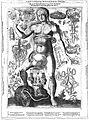J. Remmelin, 1660; female anatomy Wellcome L0018141.jpg