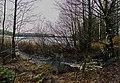 JOULUKUUSSA ALINENJÄRVEN POHJOIS OSAAN LASKEVALLA PUROLLA - panoramio.jpg