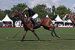 Jaeger-LeCoultre Polo Masters 2013 - 31082013 - Match Legacy vs Jaeger-LeCoultre Veytay for the third place 20.jpg