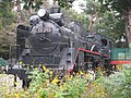 Japanese-national-railways-C58-395-20111103.jpg