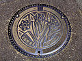 Japanese Manhole Covers (10925428434).jpg