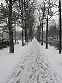 Jardin du Ranelagh - neige 1.jpg
