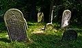Jewish cemetery Szydlowiec IMGP7696.jpg