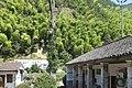 Jinyun, Lishui, Zhejiang, China - panoramio - 梅白 (25).jpg
