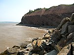Joggins Fossil Cliffs on the Bay of Fundy at Joggins, NS - 08734.JPG