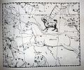 "Johannes Hevelius - Prodromus Astronomia - Volume III ""Firmamentum Sobiescianum, sive uranographia"" - Tavola SS - Canis Minor.jpg"