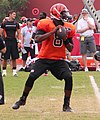 Josh Johnson (quarterback) 2013.jpg