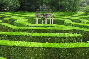 Hedge maze - The octagonal Jubilee Maze at Symonds Yat